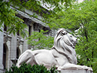 nypl-fortitude-lion-sculpture