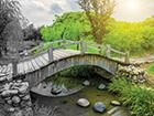 ndlc-2016-bridge-photo-140x105