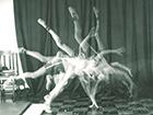 2016-08-22-uiowa-cartwheel-sequence-1960s-140x105