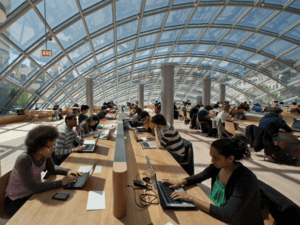 patrons in Grand Reading Room of The Joe and Rika Mansueto Library