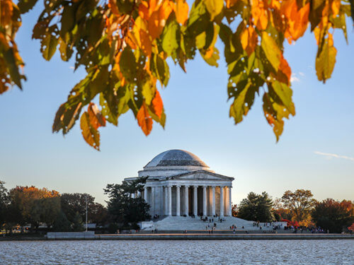 autumn leaves at Jefferson Memorial and Tidal Basin, Washington, DC