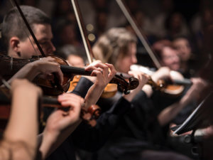 closeup of a string quartet playing music